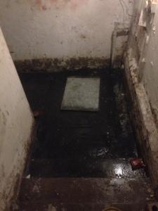 Drain Doctor clear cellar drain